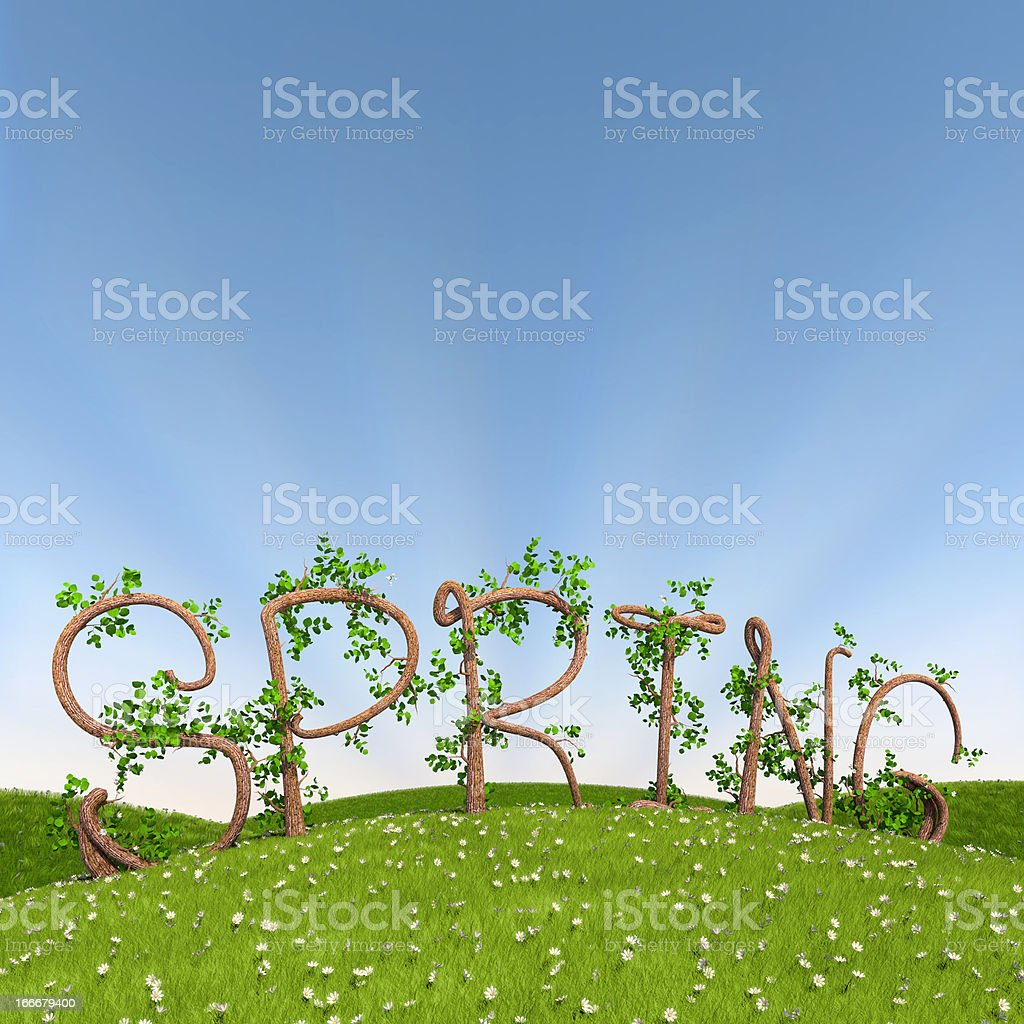 Spring in tree letters 3d render of the word spring written in letters made of trees. Backgrounds Stock Photo