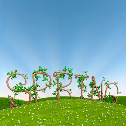 Spring In Tree Letters Stock Photo - Download Image Now