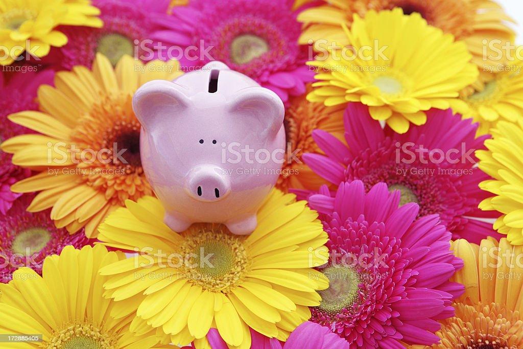 Spring into Savings stock photo