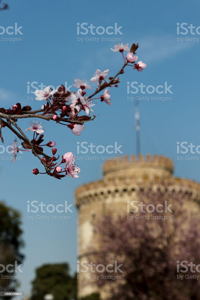 Spring is coming to town stock photo