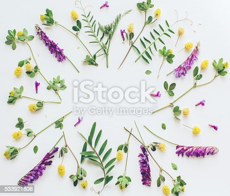 istock Spring is here! 533921806