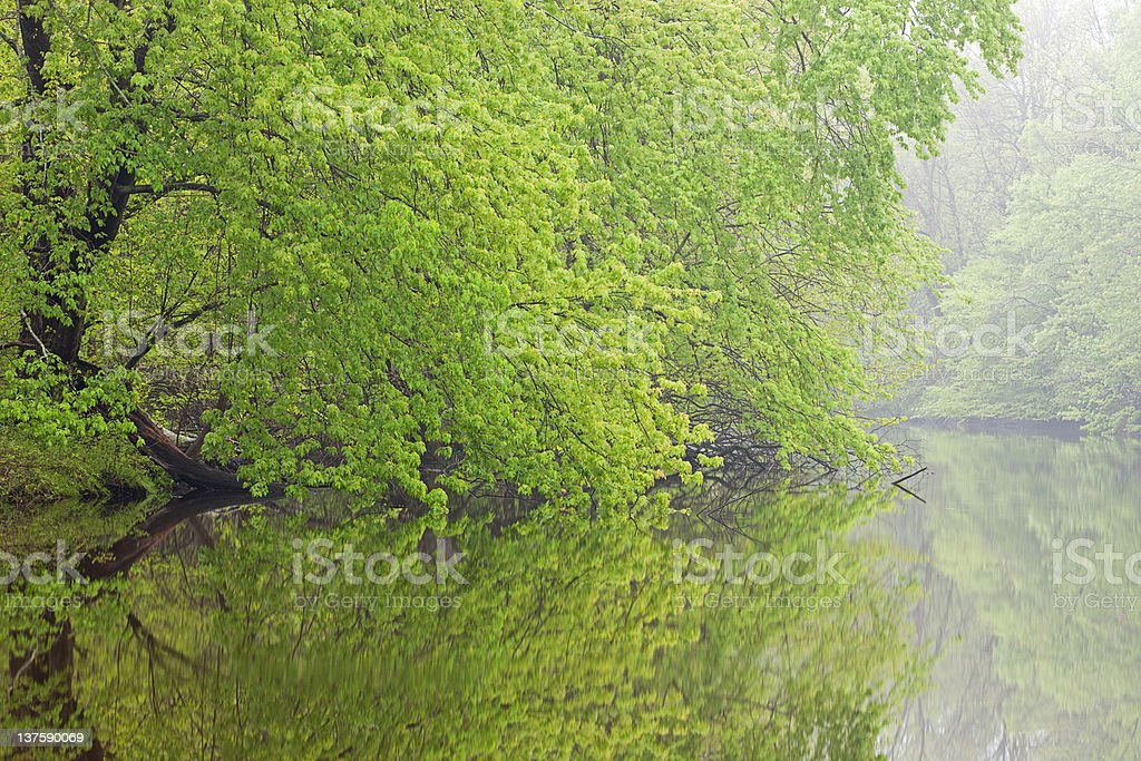Spring Kalamazoo River stock photo