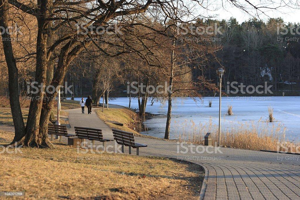 Spring lake royalty-free stock photo