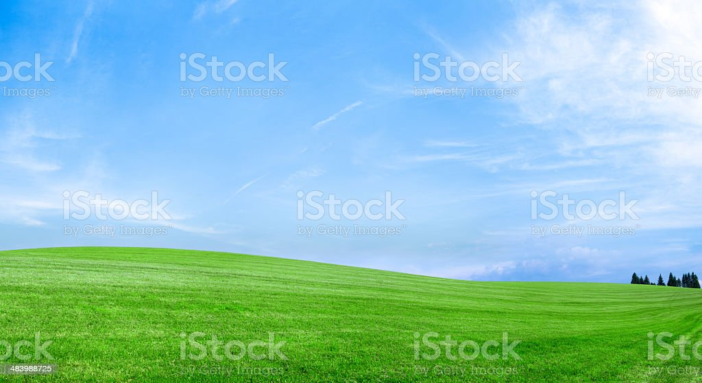 Spring landscape 79MPix XXXXL - meadow, blue sky, clouds royalty-free stock photo