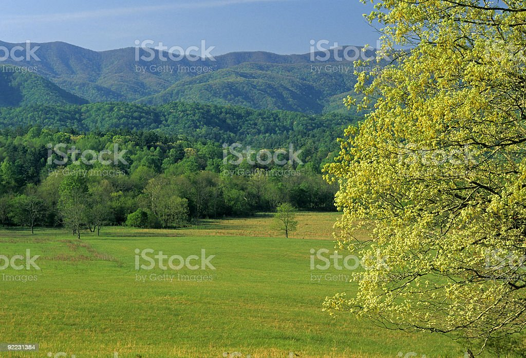Spring Landscape, Cades Cove, Great Smoky Mtns NP stock photo