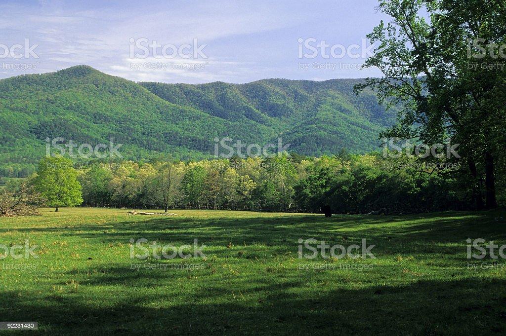 Spring Landscape, Cades Cove, TN stock photo