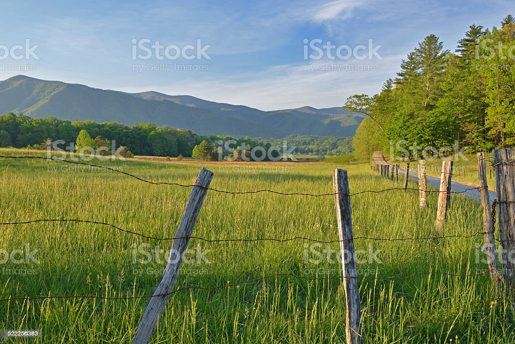 Spring Landscape Hyatt Lane stock photo
