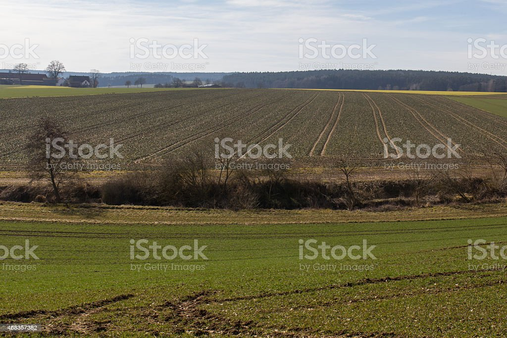spring landscape in bavaria royalty-free stock photo