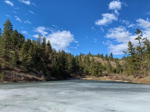 Spring landscape of evergreen forest on hillside with frozen lake