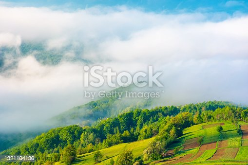 spring landscape on a misty morning. amazing mountain view in the distance. scenic outdoor scenery. beautiful nature environment background. clouds on the sky above horizon
