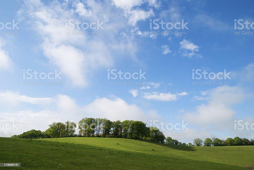 Spring landscape royalty-free stock photo