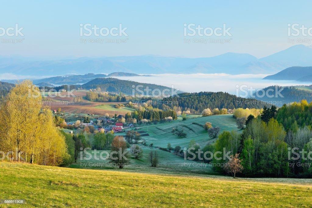 Spring landscape zbiór zdjęć royalty-free