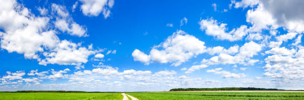 spring landscape with blue sky,white clouds and field beautiful rural spring landscape with blue sky,white clouds and field. agriculture field with wheat cloud sky stock pictures, royalty-free photos & images