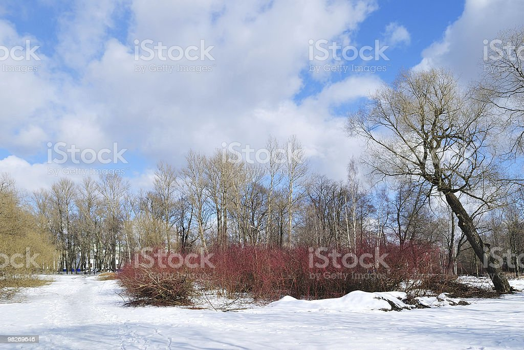 Spring landscape with clouds royalty-free stock photo