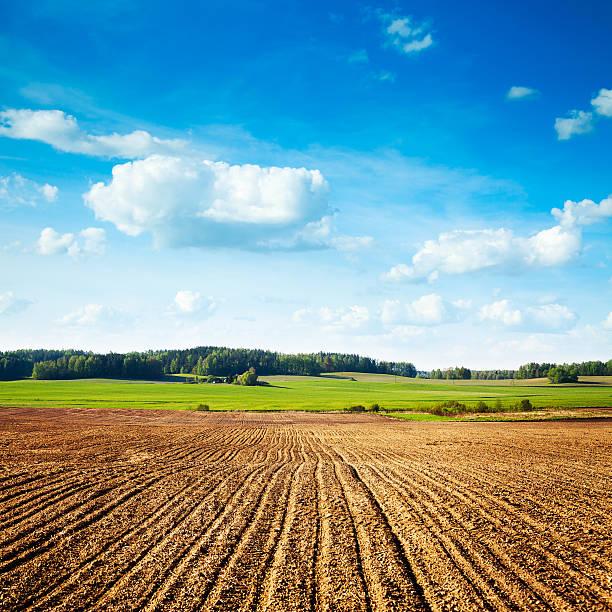 Frühling Landschaft mit Gepflügtes Feld und blauer Himmel – Foto