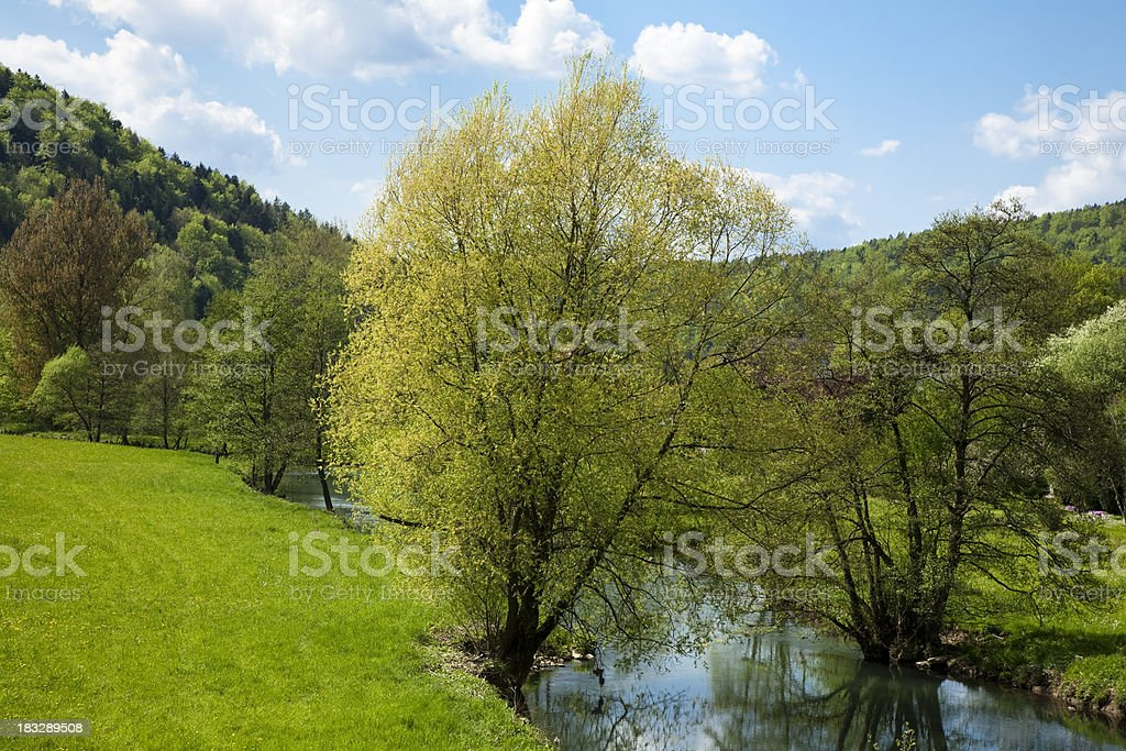 Spring Landscape with River and Blue Sky royalty-free stock photo