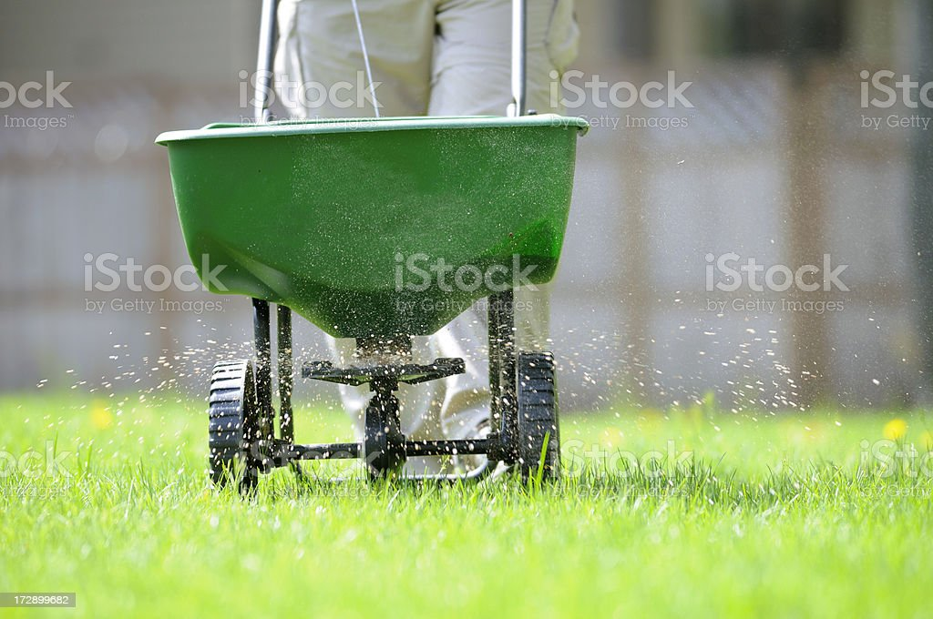 Spring lawn care. stock photo