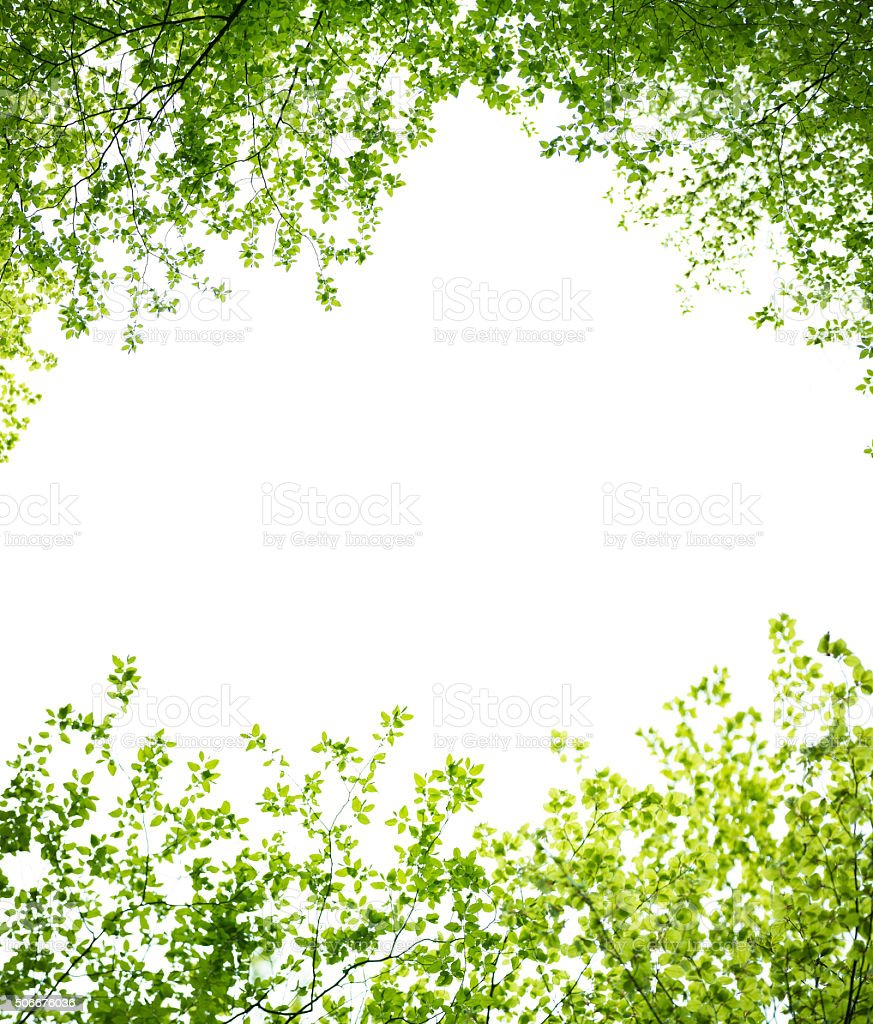Spring Leaves Frame Stock Photo & More Pictures of Beauty ...