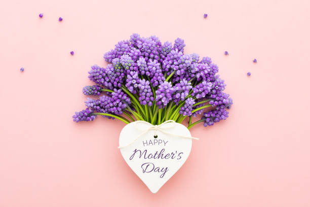 spring lilac flowers and a heart shape card happy mother's day on pink. - mothers day stock pictures, royalty-free photos & images