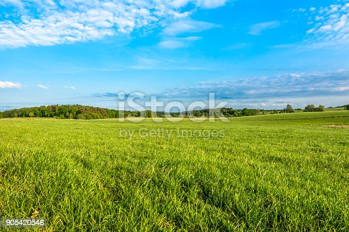 Spring meadow and blue sky over grass field, countryside landscape