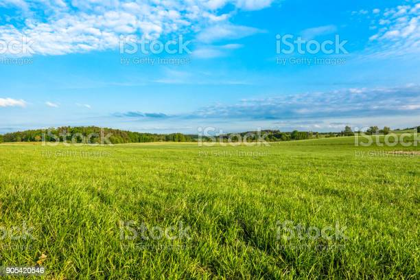 Photo of Spring meadow and blue sky over grass field, countryside landscape