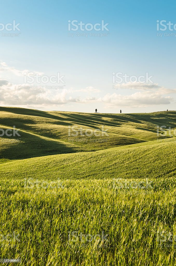 Spring meadow on italy royalty-free stock photo