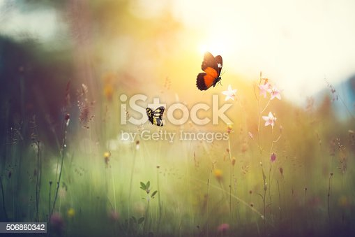 istock Spring Meadow With Butterflies 506860342
