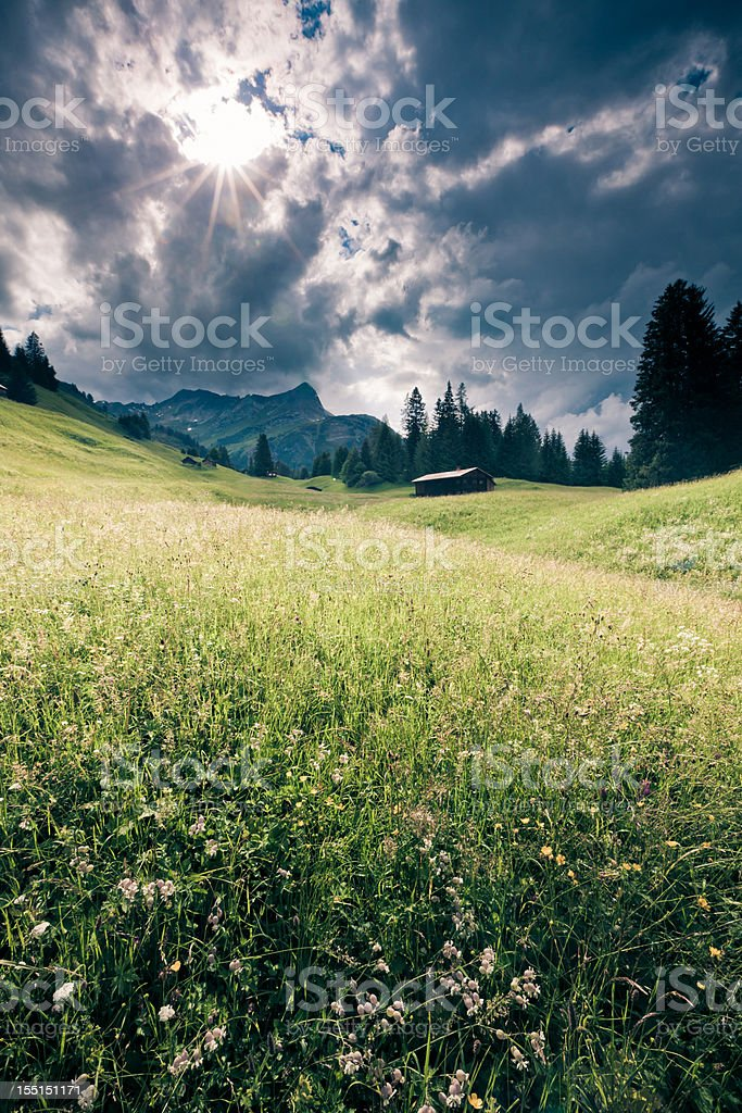 spring meadow with dramatic sky tirol, austria- vintage filtered royalty-free stock photo