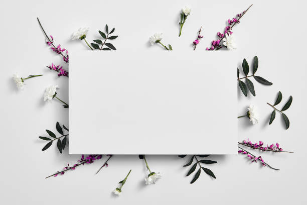 Spring minimal concept creative flowers flat lay white paper blank picture id1210377731?b=1&k=6&m=1210377731&s=612x612&w=0&h=nlcewj7zhsnlcy jsztrwrqcjxk5iiqxmfrusmrpcwo=