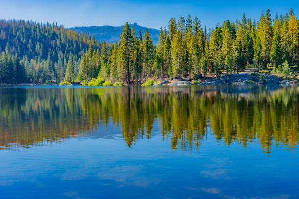 spring morning at hume lake near kings canyon national park, ca (p) - lakeshore stock photos and pictures