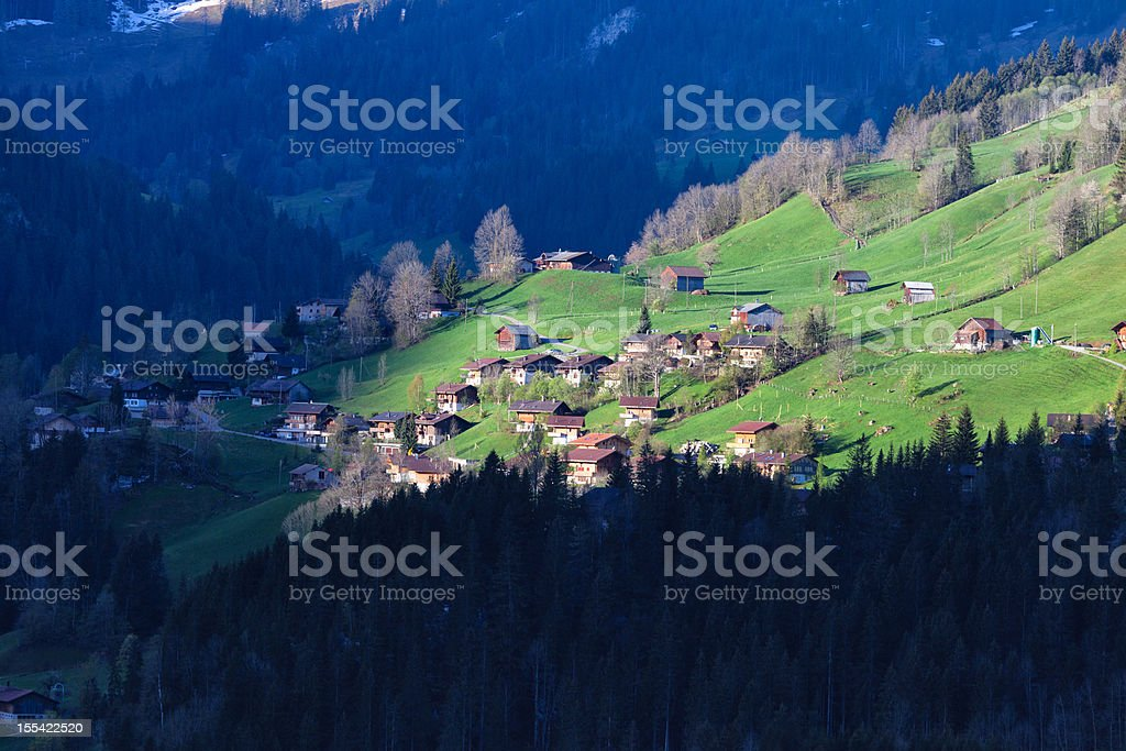 Spring Morning, Swiss Alps, Obersimmental royalty-free stock photo
