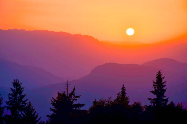 Spring mountain forest and beautiful sunset stock photo