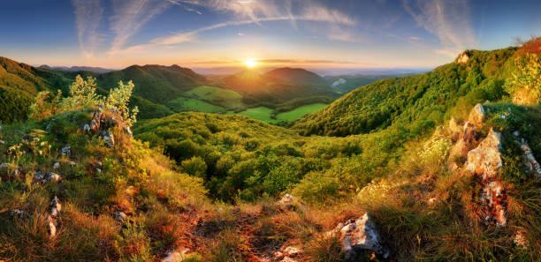 Frühlingslandschaft Panorama mit Wald und Sonne – Foto