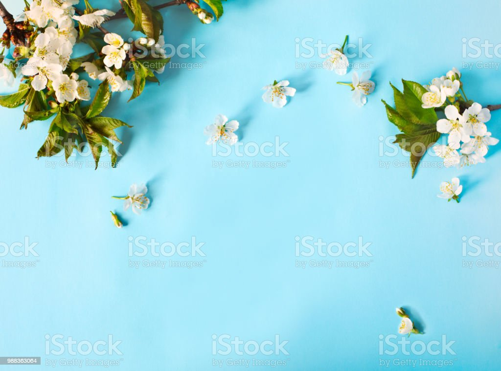 Spring Nature Background With Blossom In Blue Pastel Color
