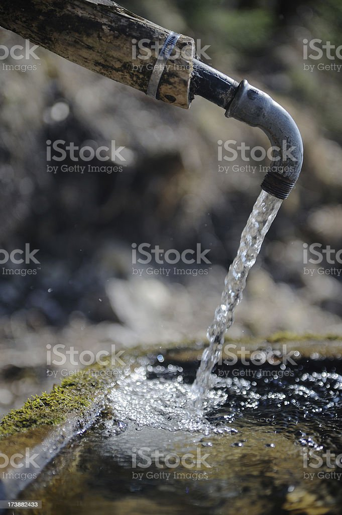 Spring of Life stock photo