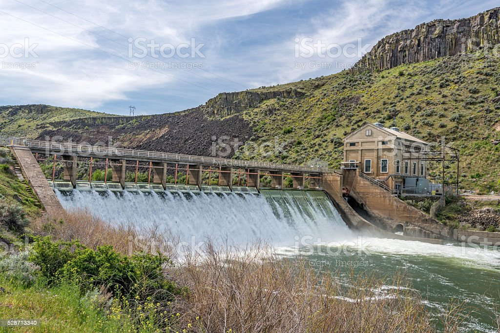 Spring on Boise River with high water and flowers stock photo