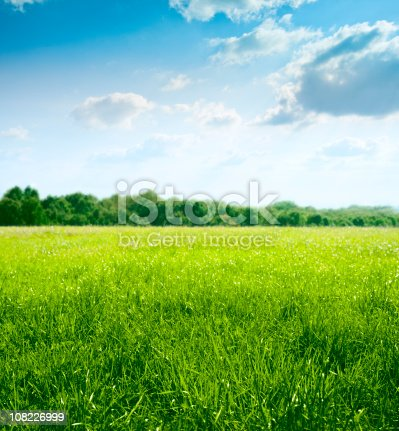 istock Spring on meadow 108226999