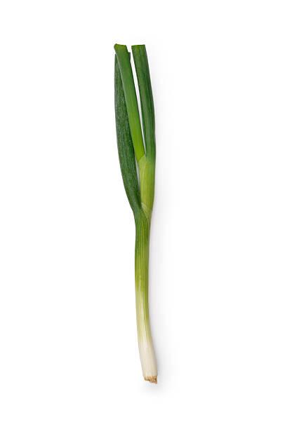 spring onion - bosui stockfoto's en -beelden