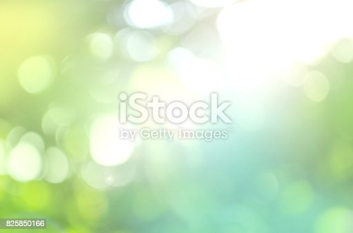 istock Spring or summer abstract nature background 825850166