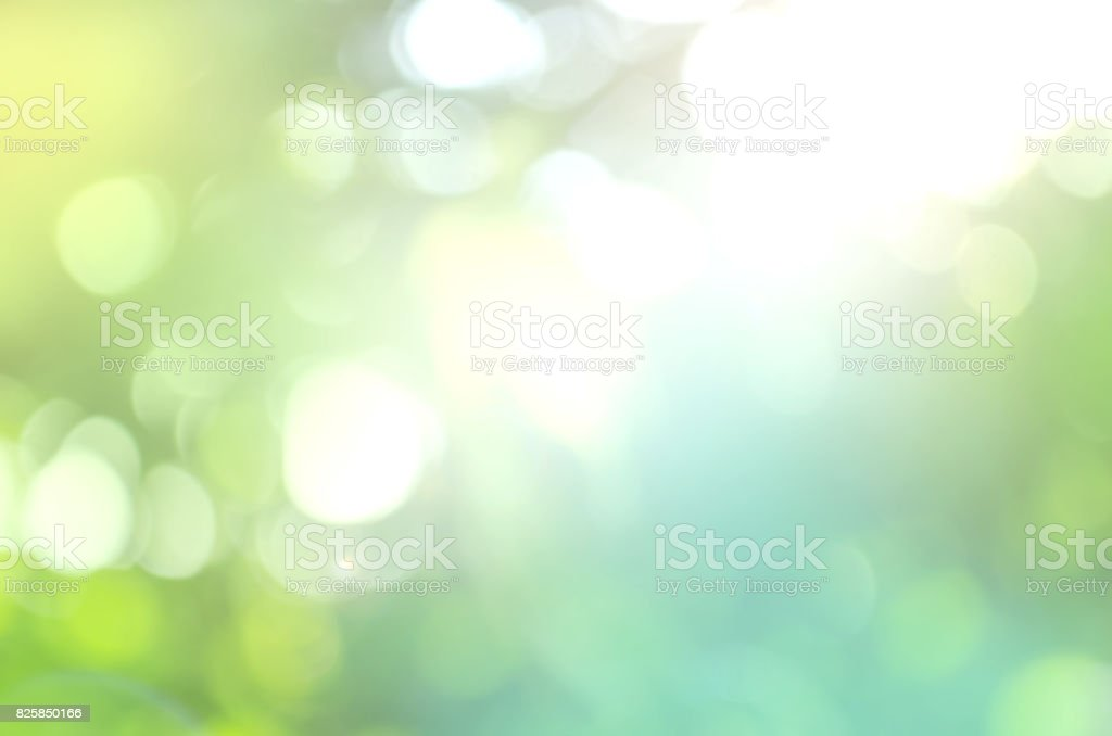 Spring or summer abstract nature background stock photo