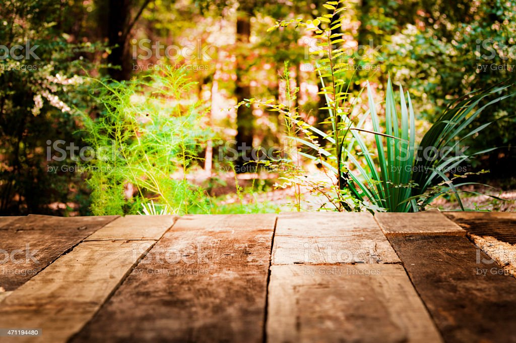 Spring Or Summer Forest Background Rustic Empty Wooden Table Royalty Free Stock