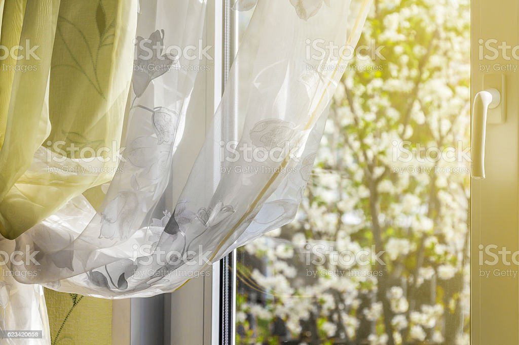 Spring outside window stock photo