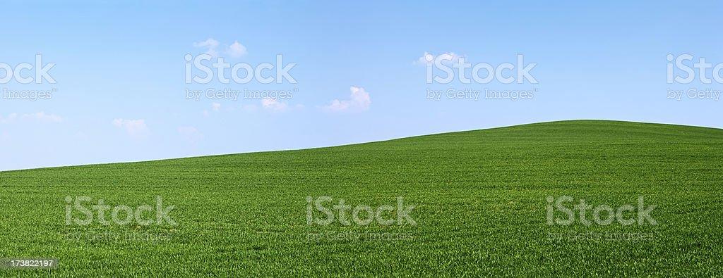 Spring panorama 28MPix XXXXL - meadow, blue sky, clouds royalty-free stock photo