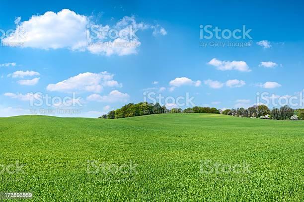 Photo of Spring panorama 46MPix XXXXL - meadow, blue sky, clouds