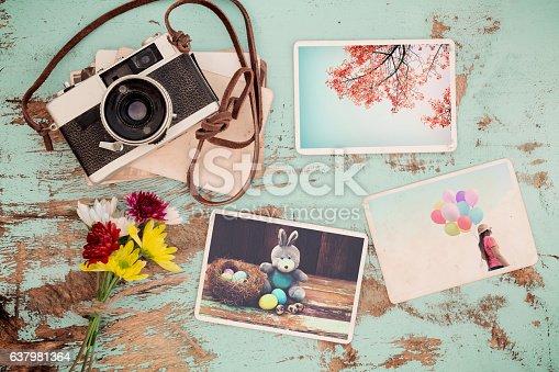 istock spring photo album 637981364