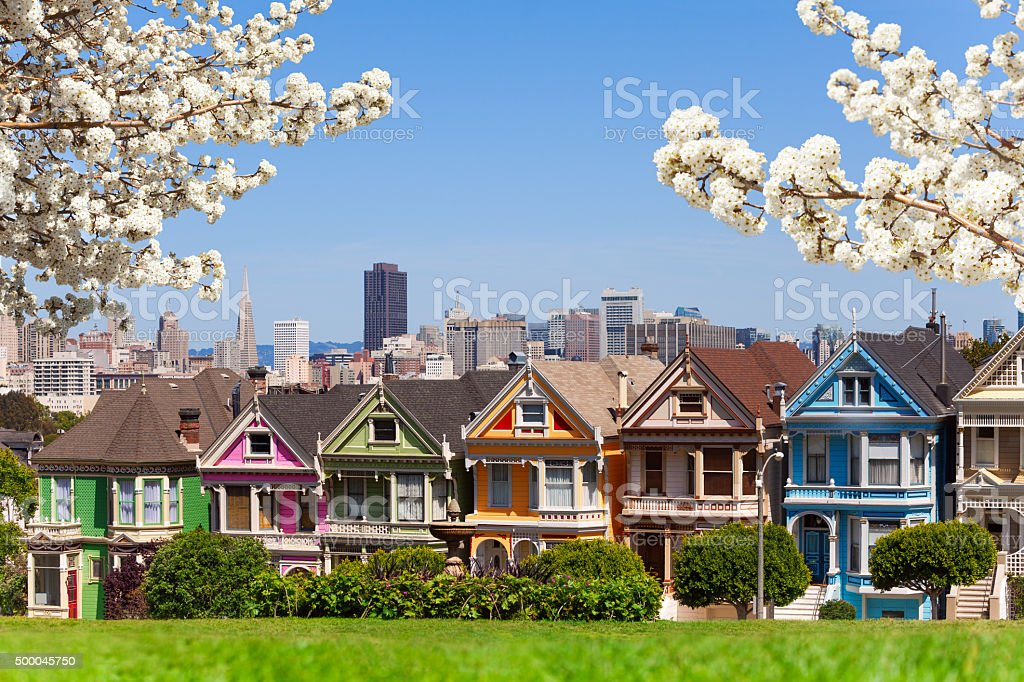 Spring photo of Painted ladies and San Francisco s stock photo