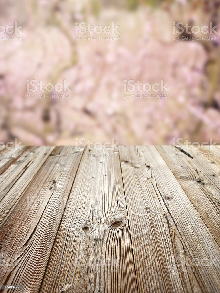 Spring Picnic table royalty-free stock photo