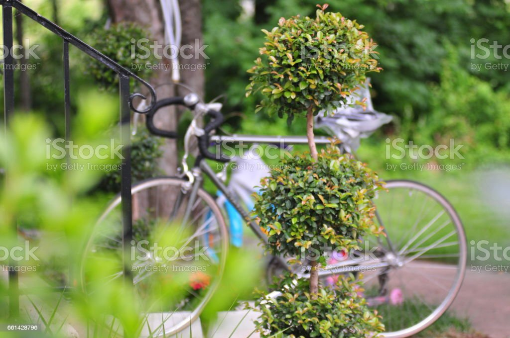 spring – Foto
