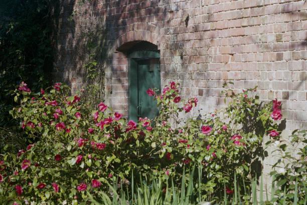 frühling - steine für gartenmauer stock-fotos und bilder
