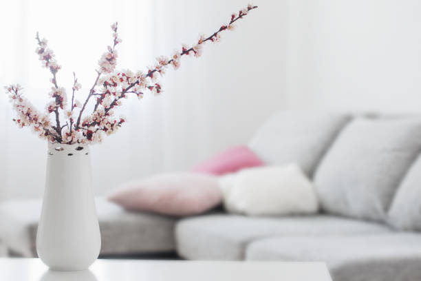spring pink flowers in vase in white interior stock photo